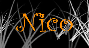 Nico's Website